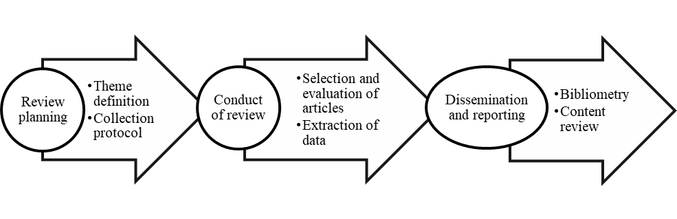 Process of applying the systematic review.