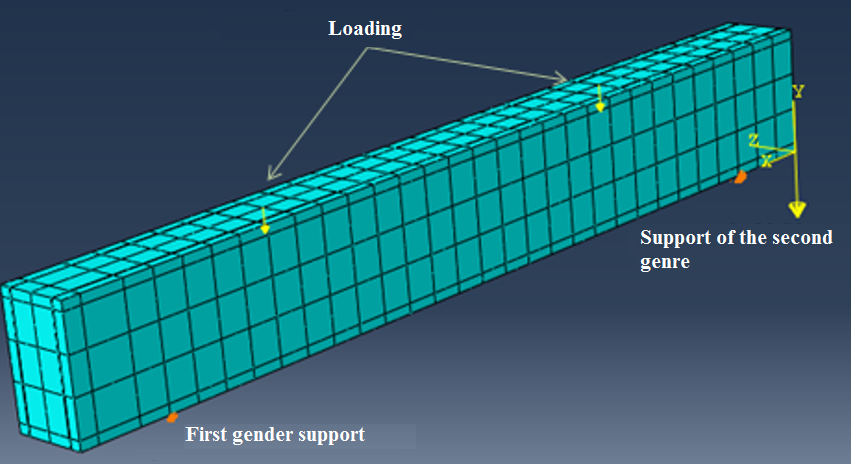 Numerical model used in finite element analysis.